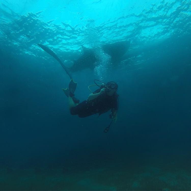 Scub diving blog